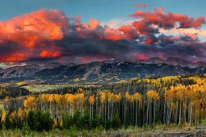 Teth retainer Colorado